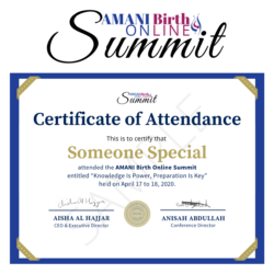 Certificate of Attendance Summit 2020