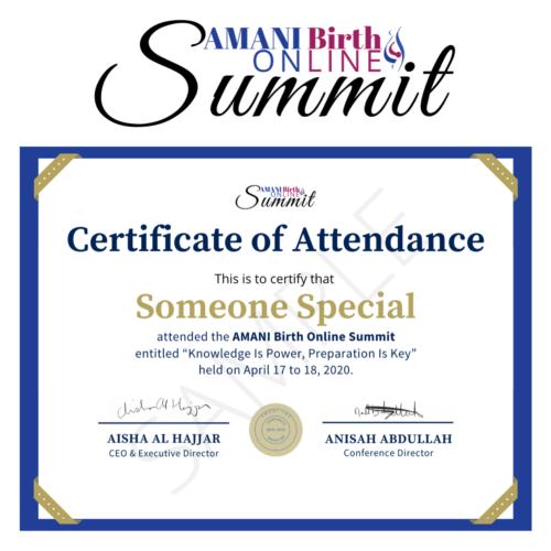 Certificate of Attendance Summit 2020